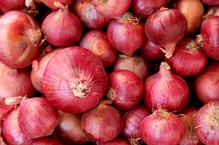 Retailers forbidden to store over 20 kg onions in Himachal's Hamirpur