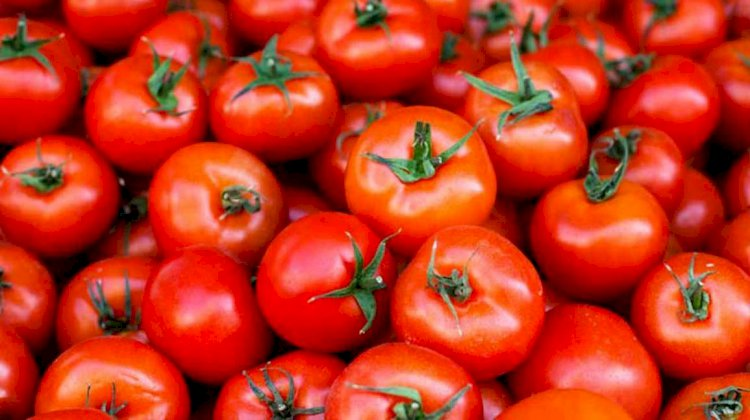 Tomato price reaches Rs.80, highest after onion's rate