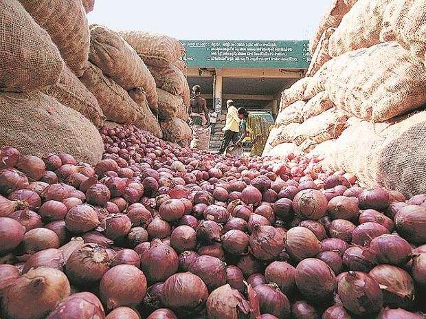 Onion Prices expected to fall  by 50 % :Reports