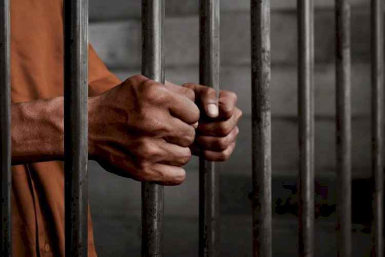 Covid-19: Process to free 8,000 prisoners from MP jails begins