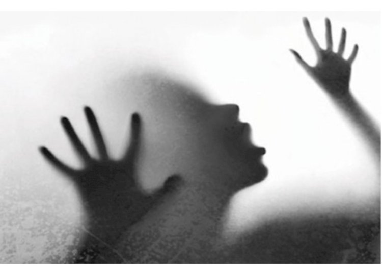 Blind woman raped in Bhopal during lockdown, husband stranded in Rajasthan