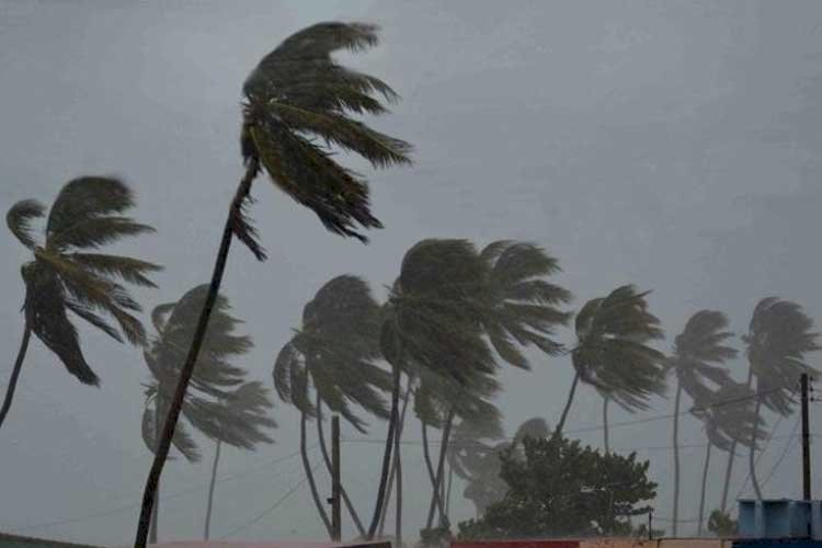 Wind speed, movement, likely damage: Highlights of Cyclone Amphan