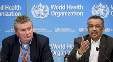 WHO expects anti-malarial drug hydroxychloroquine safety findings by mid-June