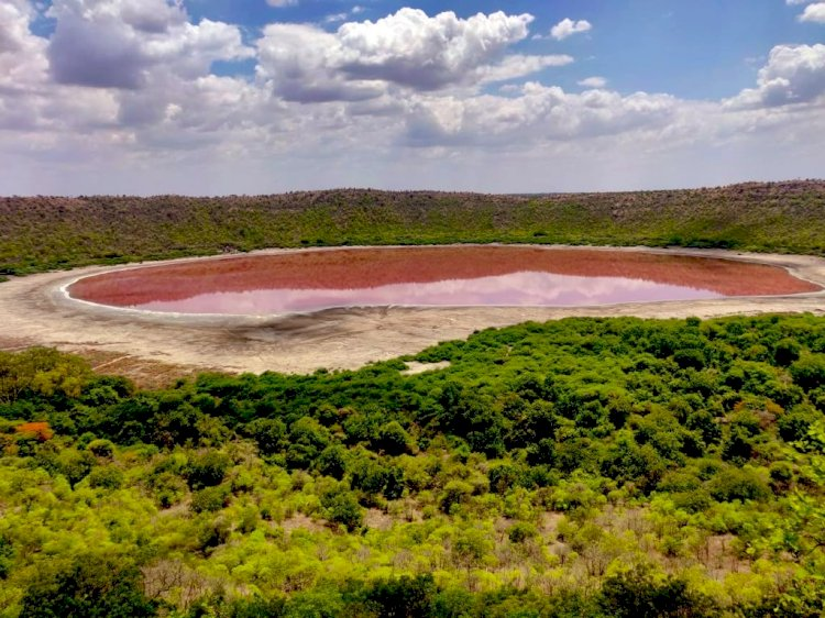 Maharashtra's Lonar lake turns pink, leaves locals and nature enthusiasts surprised