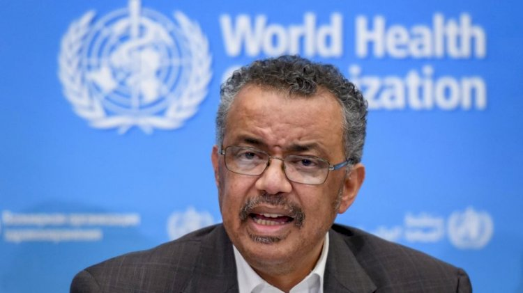 WHO reports highest single-day increase in coronavirus cases
