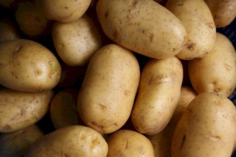Bengal govt to ensure potato retail price for consumers at Rs 25 per kg