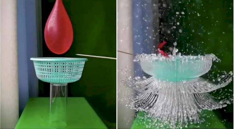 Slow-mo video of water balloon bursting and turning into a flower has the Internet saying wow